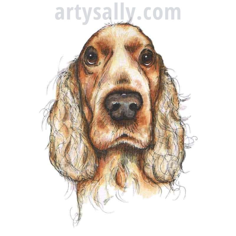 Dog Spaniel