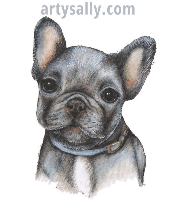 Dog French Bulldog (Dark)