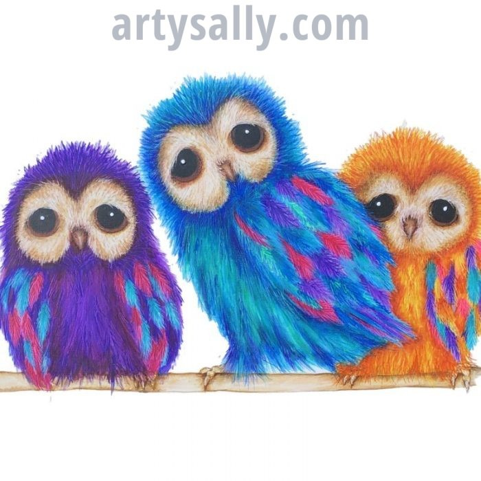 Fluffy Colourful Owls