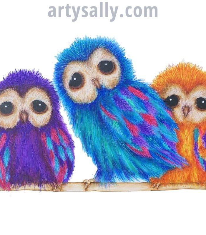 Fluffy Colourful Owls